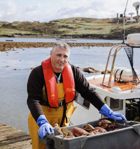 pescando buey de mar